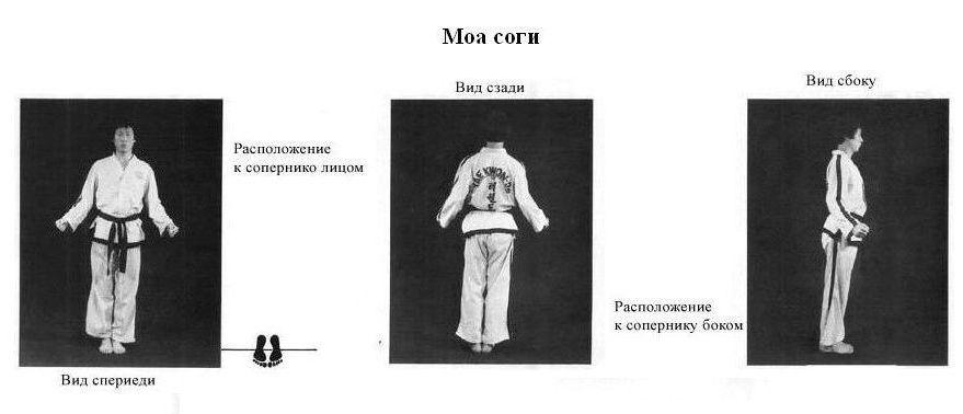 Фото абхазии отзывы отдыхающих современном интерьере
